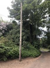 Street Lights Replaced